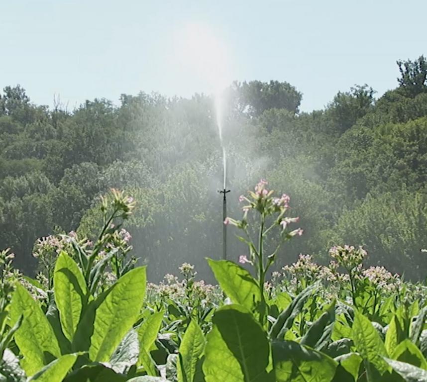 Irrigation couverture int grale chambre d 39 agriculture - Chambre agriculture alpes maritimes ...